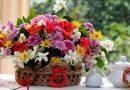 Kutuda Çiçek Bakımı Nasıl Yapılır